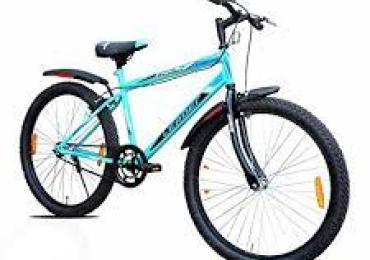 Adult bicycle modern